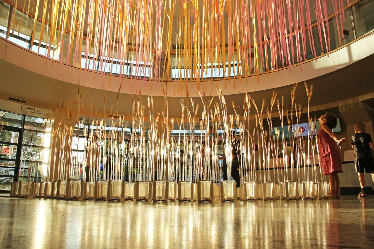 Shenzhen Has Everything from a Kinetic Wheat Field Installation to a Lamp That Responds to Your Emotions