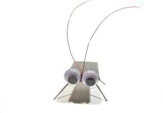 Solar Cockroach Set
