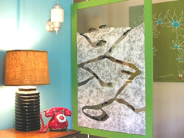 Ant Farm Room Divider