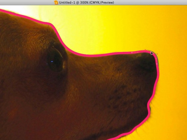 Silhouette Dog Portrait Using Illustrator