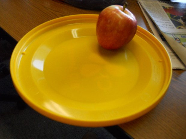 Frisbee Plate