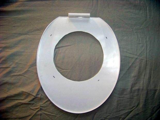 Civilized Cat Toilet Training
