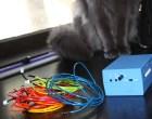 Nyan Cat Costume with EL Rainbow