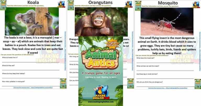 Animal Antics – Reading Comprehension Worksheets (30)