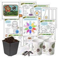 Virtual Workshop Daisy Garden in a Day