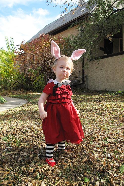 Alice Wonderland Caterpillar Costume Homemade