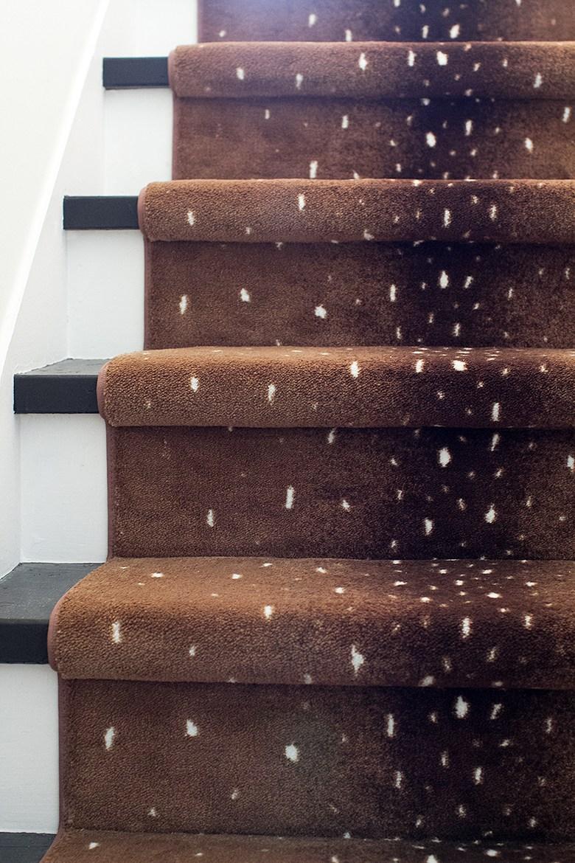 Karastan Antelope Carpet Making It Lovely   Antelope Carpet On Stairs   Stark   Patterned   Helios   Farmhouse   Foyer