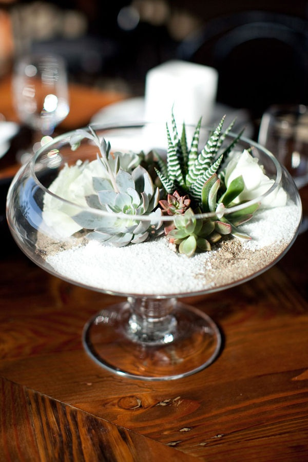 5 Beautiful Ways To Use Succulents