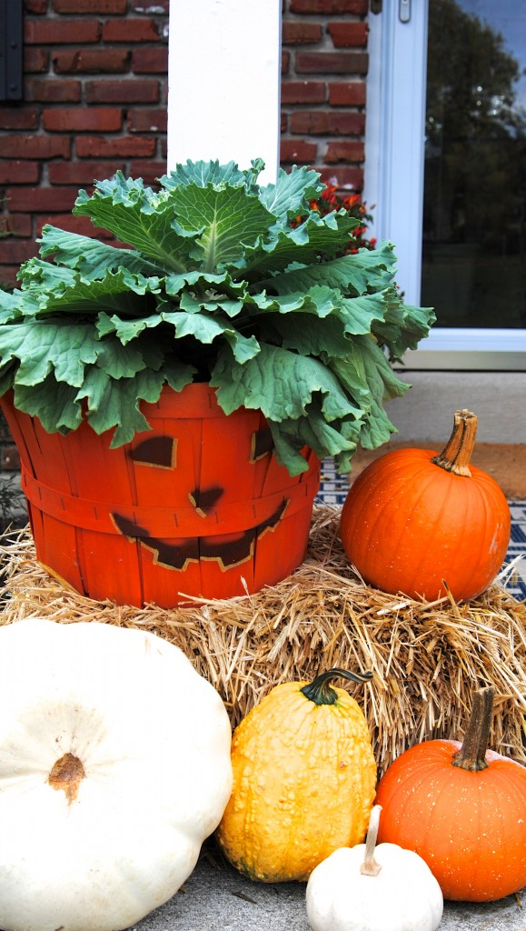 Front Porch Outdoor Decor for Fall {hello, Chili Peppers ... on Lawn Decorating Ideas  id=44865