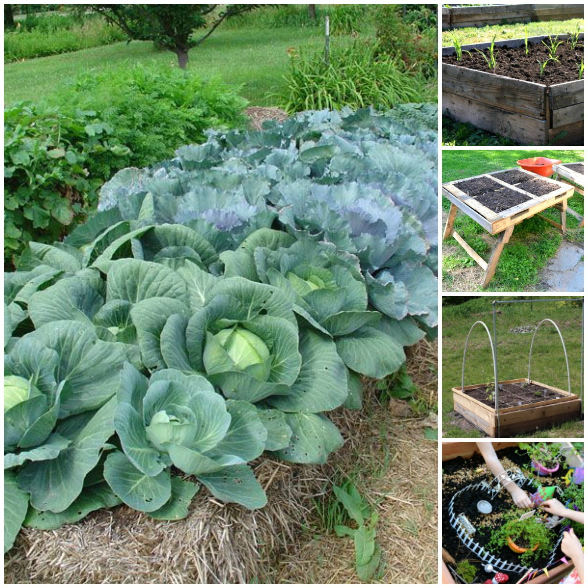 20 Brilliant Raised Garden Bed Ideas You Can Make In A ... on Backyard Raised Garden Bed Ideas id=31781