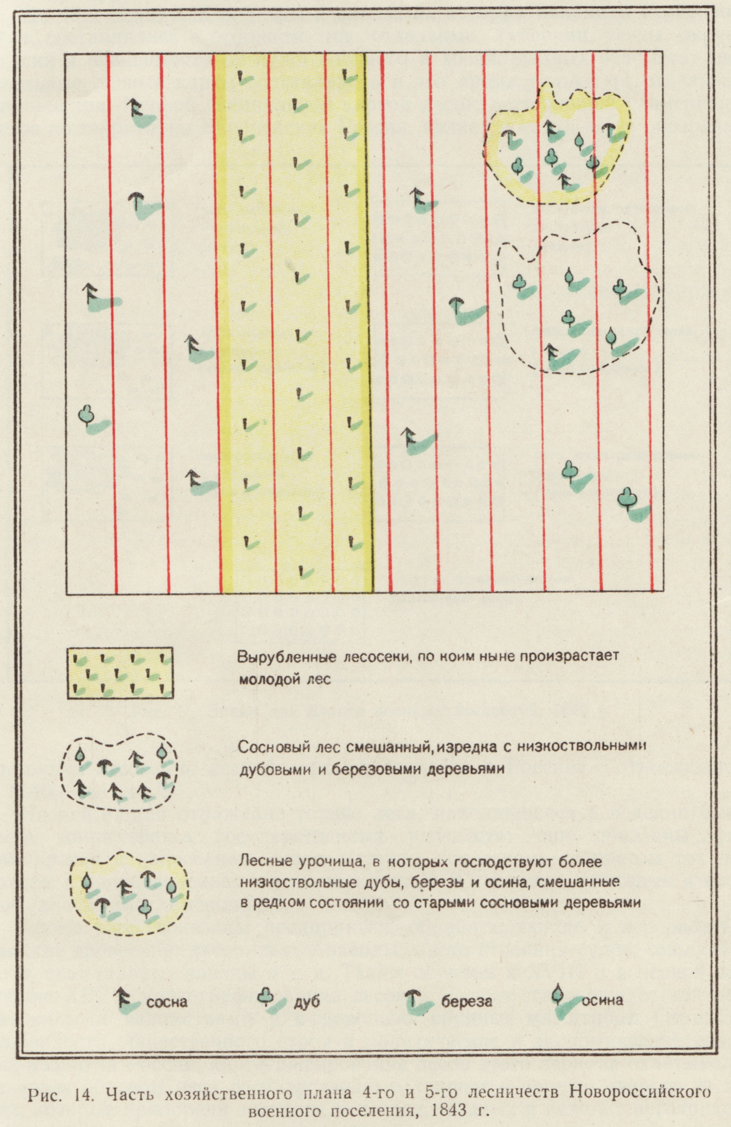 russian_forest_symbols_14