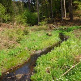 An einem Wegekreuz zwischen Allrode und Treseburg