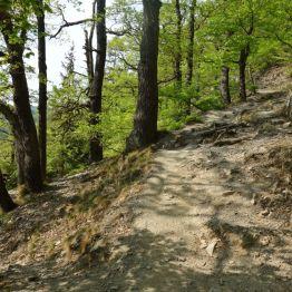 """Aufstieg zum """"Weißen Hirsch"""" oberhalb von Treseburg"""