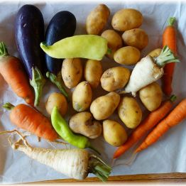 Daraus gibt es jetzt einen Gemüseauflauf!