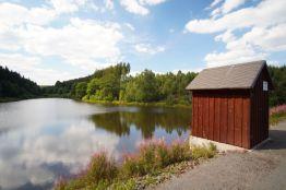 Tief im Wald liegt diese neue Stempelstelle: Die Kiliansteiche! Wunderschön und sehr einsam!