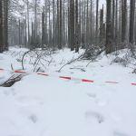"""Zum Vergleich: Schneehöhe-Stand an der """"Endstation"""" zum Vergleich von vor 3 Tagen.."""