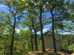 Die Köthener Hütte oberhalb von Alexisbad