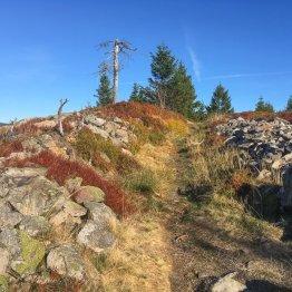 """Weiter geht es von der Hanskühnenburg zur Schindelkopfköte, hier über den sehr schönen """"Nassen Weg""""."""