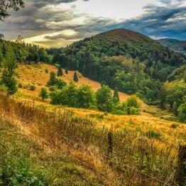 """Die """"Hundertmorgenwiese"""" in der Nähe von Zorge"""
