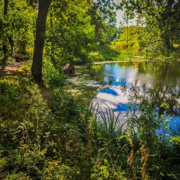 Landschaftspark Degenershausen mit Stempelstelle der Harzer Wandernadel am Teich