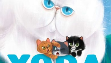 Photo of Yoda: The Story of a Cat and his Kittens by Beth Stern has been released!