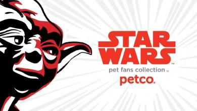 star wars dog toys 1024x648