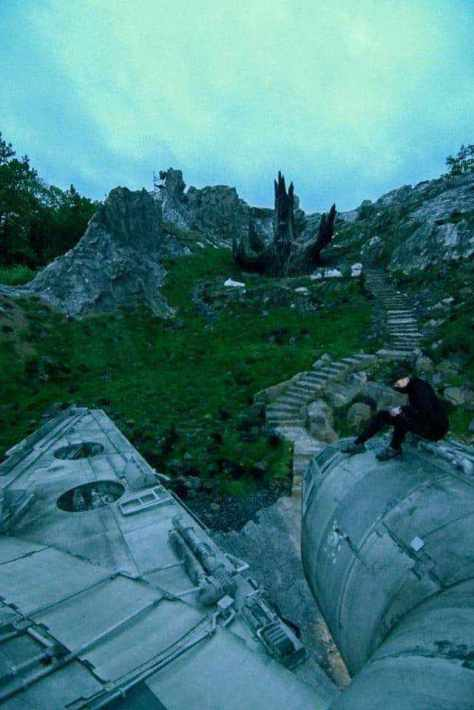 Star Wars: The Last Jedi and a tree's fate