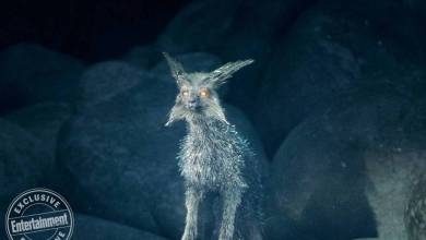 Photo of Star Wars: The Last Jedi Crystal Fox image and details!