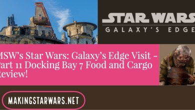 Photo of MSW's Star Wars: Galaxy's Edge Visit – Part 11 Docking Bay 7 Food and Cargo Review!