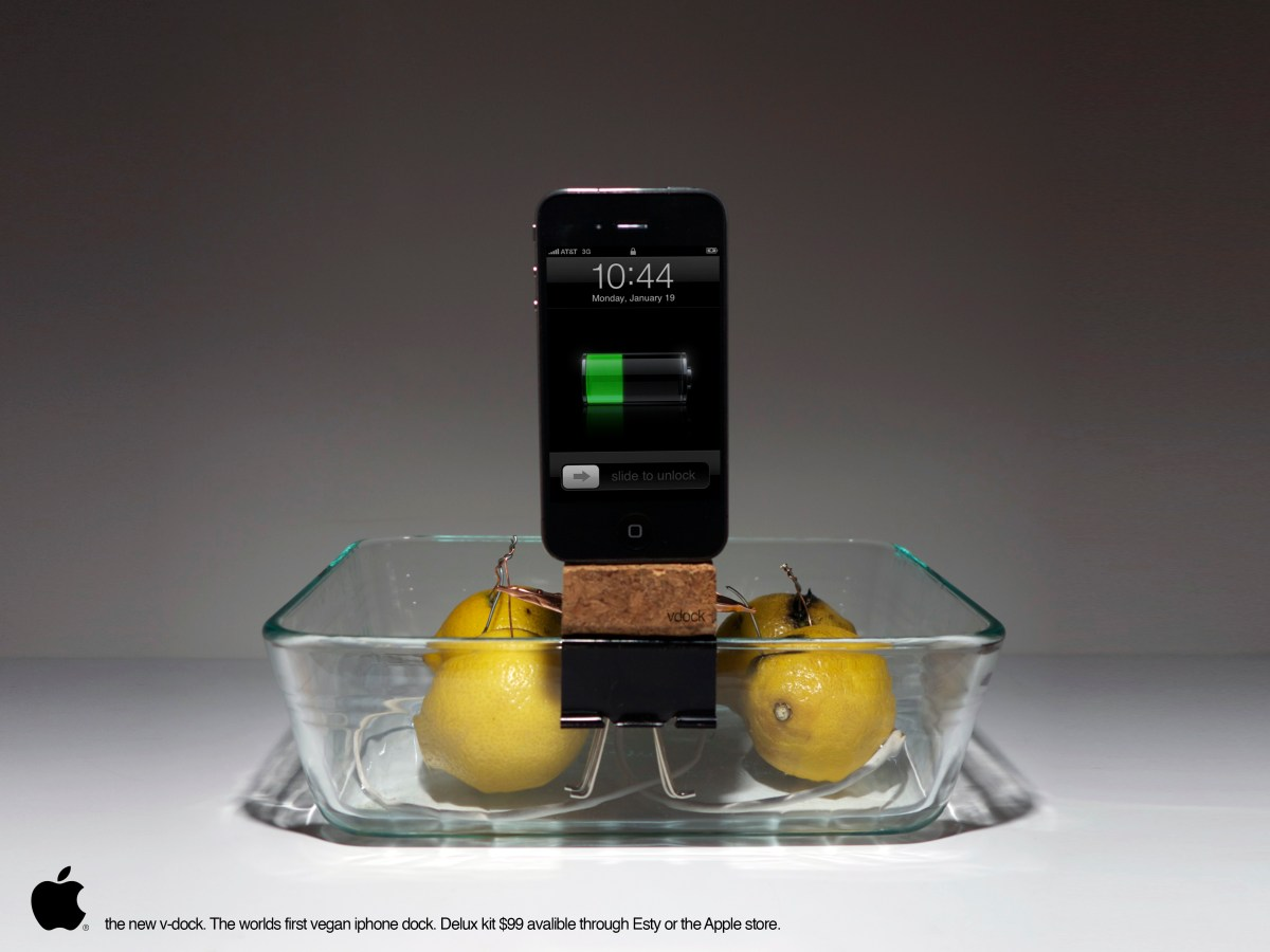 Project One: Vegan Phone Dock