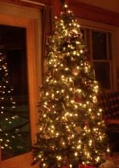 christmastree_cottage