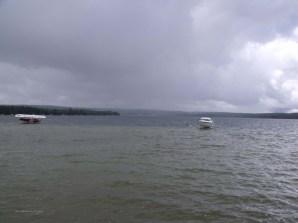 rain in south bay