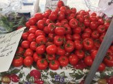 tomatoes and more