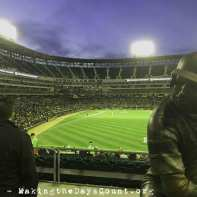 Twins at Sox - 4/7/17