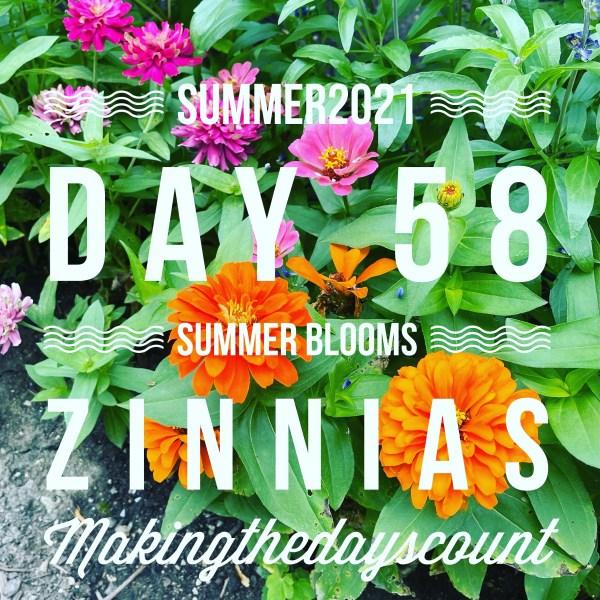 Thursday, Day 58 - summer blooms abound in the back garden