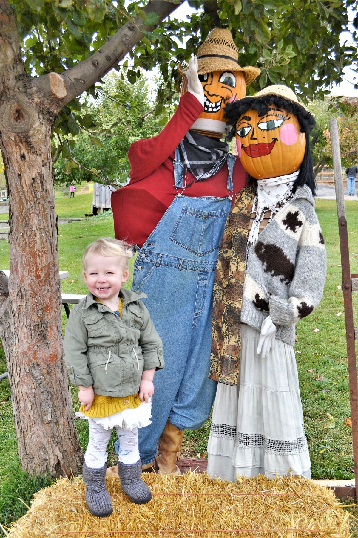 Davidson Orchard Adventure - scarecrows
