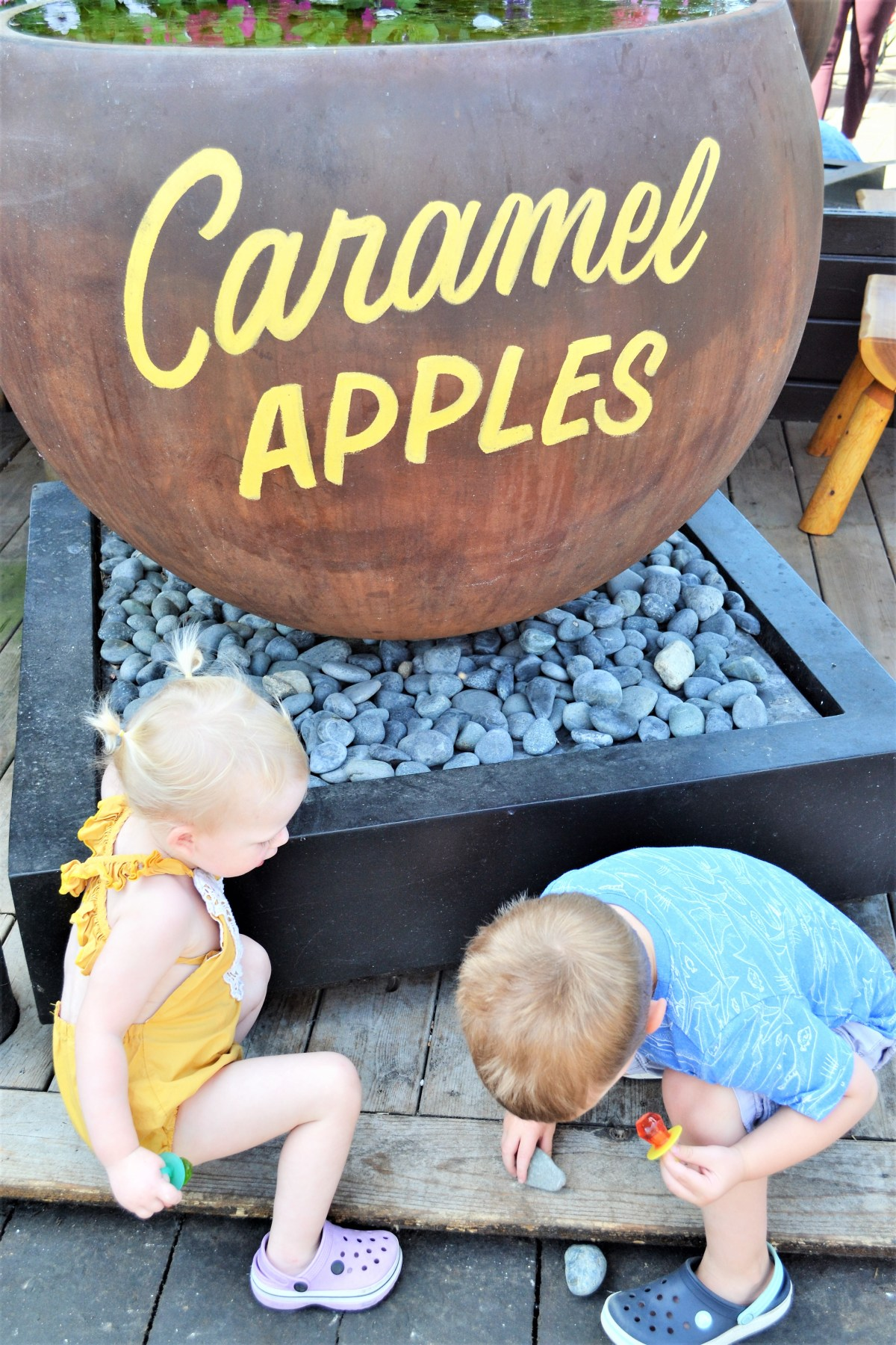 The Log Barn Adventure - caramel apples