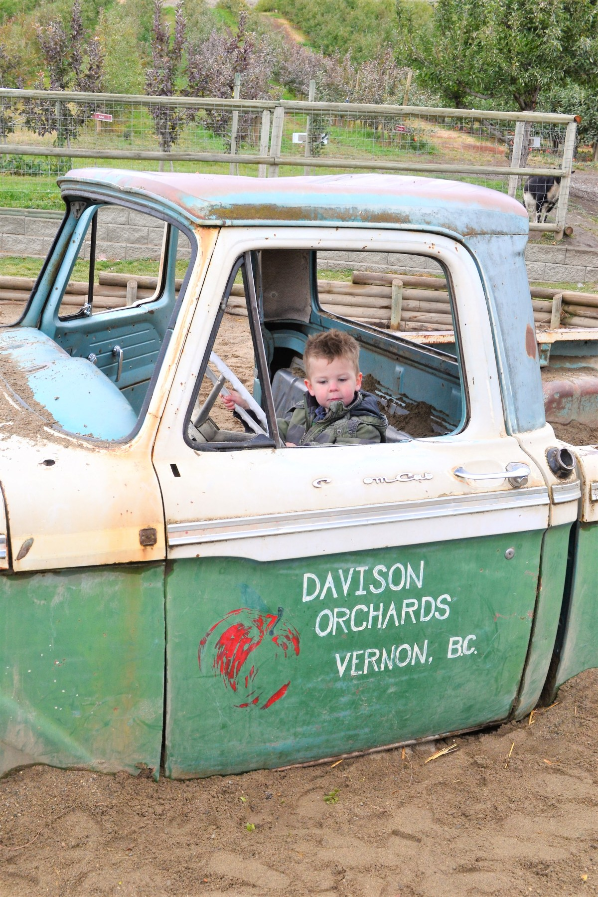 Davidson Orchard Adventure - driving the truck