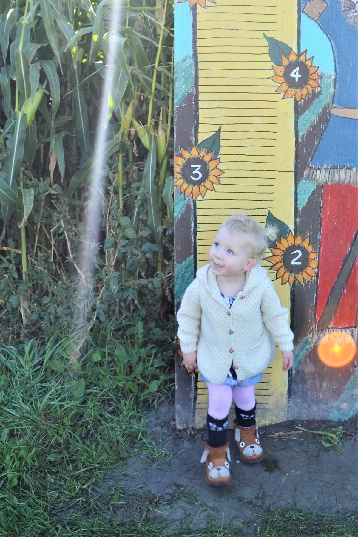 McMillan Farms Pumpkin Adventure! - cute smile