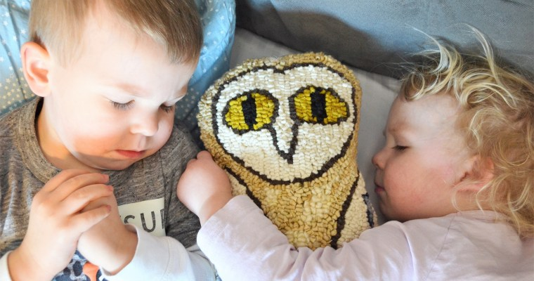 Rug Hooking: How to Make Your Rug Hooking Patterns into a Pillow!