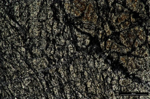 Thin section (ppl) of Lizard Serpentinite
