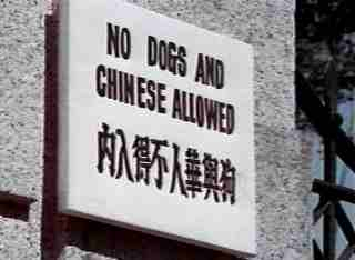 No Dogs And Chinese Allowed