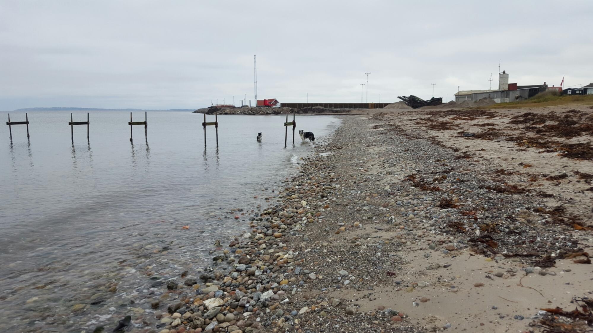 Samsø – øen jeg ikke kan få nok af