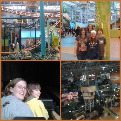 Nickelodeon Universe collage 1