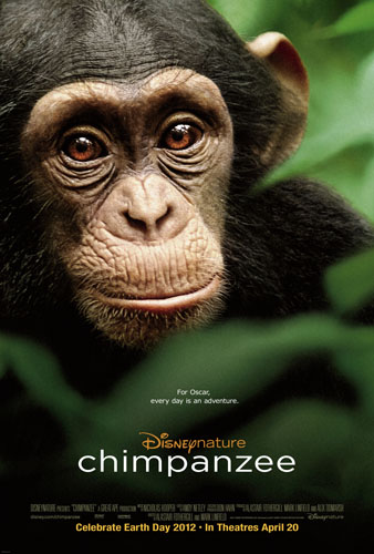 DisneyNature Presents Chimpanzee In Theaters on Earth Day