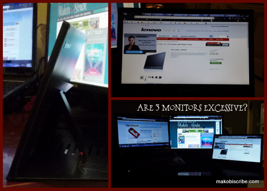 Lenovo ThinkVision Monitor Review
