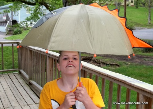 Cute Umbrellas for Kids