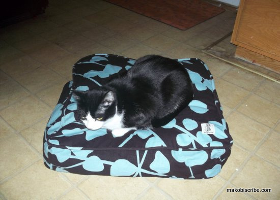 Pretty Pet Duvet Covers From Molly Mutt Sweepstakes