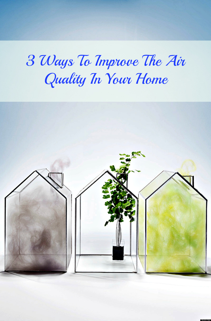 Three Ways You Can Improve The Air Quality In Your Home