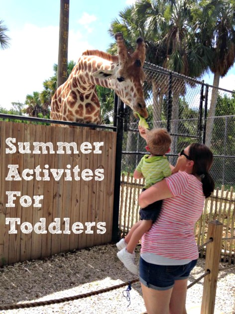 summer activities for toddlers feeding the giraffes